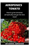 AEROPONICS TOMATO: How to grow tomatoes aeroponically and get the best result
