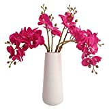 BOMAROLAN Artificial Flowers Faux Butterfly Orchid 4 Pcs Real Touch Double Branch Silk Flowers for Wedding Home Office Party Hotel Yard Decoration Restaurant Patio Festive Furnishing (Fuchsia)