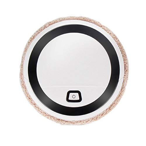 Affordable BFFDD Intelligent Sweeping Robot Floor Wash Wiping Mopping Machine Wet Dry Cleaner Rotati...