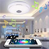 WowObjects 48W LED Flush Mount Modern Ceiling Light Dimming Lamp Fixture with Bluetooth Speaker AC100-240V