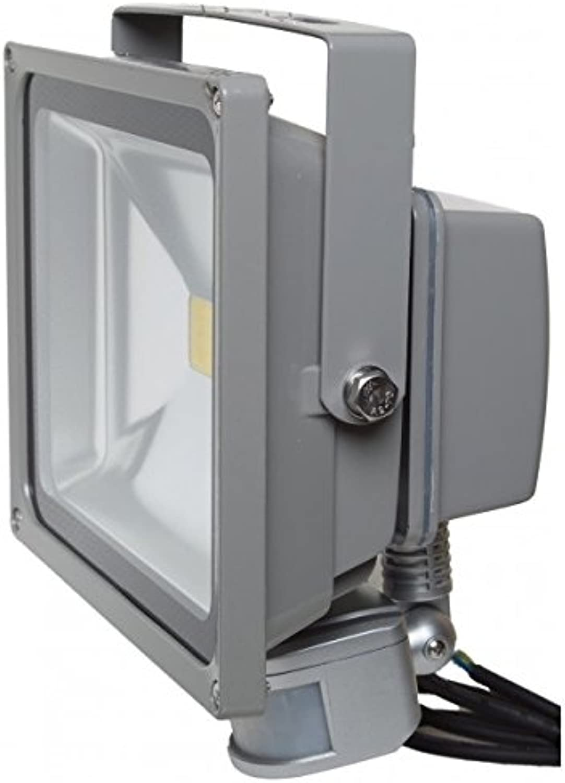 LED-Scheinwerfer 30W warmwei IR IP54Auen