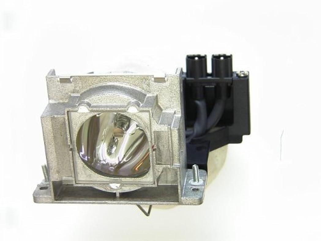鎮静剤動的文献三菱電機 データプロジェクターLVP-XD480/XD450/XD400/ES100用交換用ランプ VLT-XD400LP VLT-XD400LP
