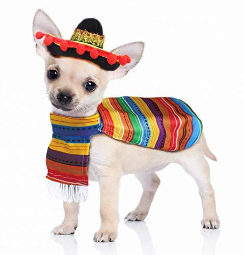 JOYIN Cinco de Mayo Fiesta Pet Costume (Large)