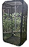 EDUCATIONAL SCIENCE WE ENABLE DISCOVERY Pro Giant Butterfly Cage, Pop-Up, 23-in x 23-in x 46-in, BC102