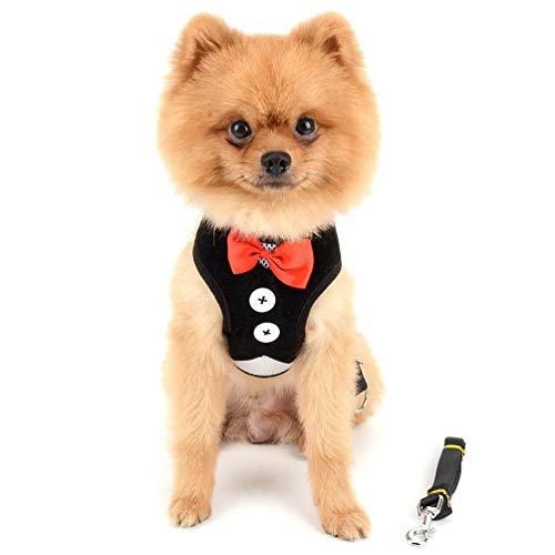 SMALLLEE_LUCKY_STORE Bowtie Small Dog Tuxedo Harness for Puppy Boy, Adjustable Soft Mesh Cat Harness Vest Leash Set Black S