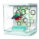 Marina Betta Kit -Geo Bubbles