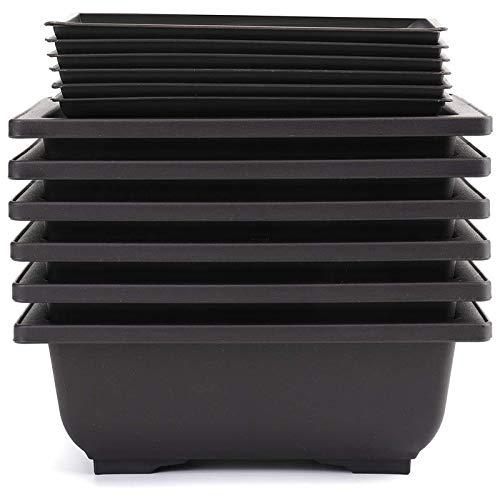 Liseng 6 confezioni di bonsai, vasi da allenamento con vassoio in plastica, bonsai, piante, vaso per giardino, cortile, camera da letto, balcone, 16,5 x 12 cm