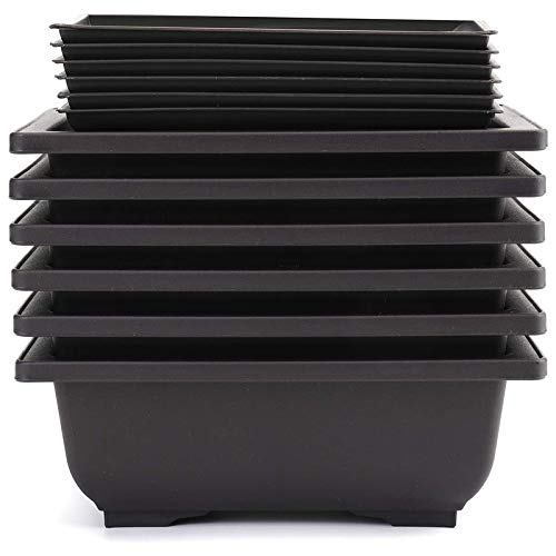 Liseng 6 Packungen Bonsai Trainingstöpfe mit Tablett Kunststoff Bonsai Pflanzen Anbau Topf für Garten Hof Wohnen Zimmer Balkon 16,5X12 cm