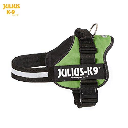 Julius-K9 Powerharness, 1, Kiwi Green