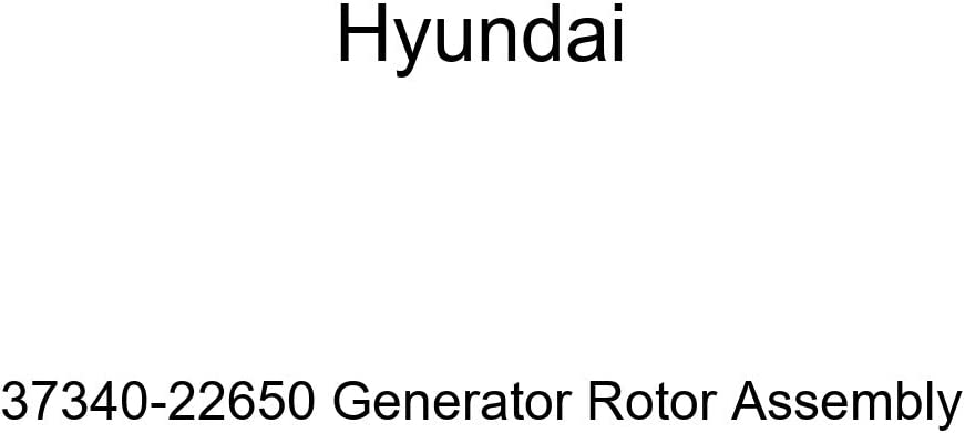 Limited time cheap sale Genuine Hyundai 37340-22650 Generator Assembly Rotor NEW before selling ☆