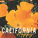 California Poppy 2022 Calendar: 12-month mini Calendar 2022 8.5 x 8.5 inches