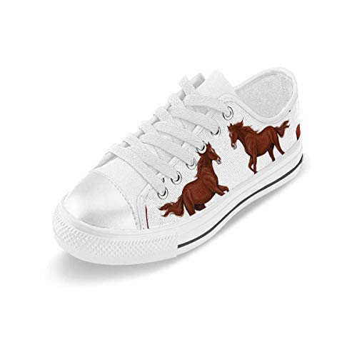 INTERESTPRINT Women's Fashion Canvas Shoes Low Top Lace Up Sneakers Casual Walking Shoes Horses Running Horses and Riders 11 B(M) US