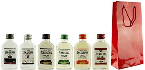Geschenkset 6 x Żołądkowa Gorzka Mini in Geschenktüte | Polnischer Wodka | je 0,1 Liter