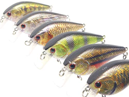 Fishing Lures 6 Hard Baits in One Tackle Box Crankbait RealSkin Painting for Bass Fishing HC15KB