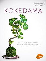 Kokedama. L'essence de la nature dans un écrin