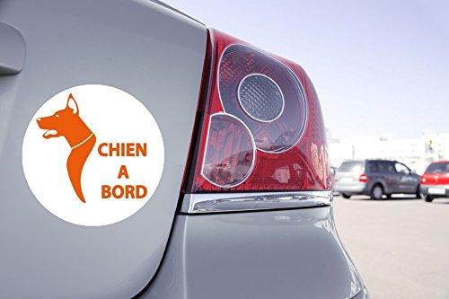 Zone-Stickers Autocollant Voiture Chien à Bord - 15cm x 15cm, Orange