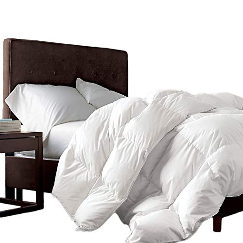 Luxurious Full/Queen Size Siberian Goose Down Comforter, 1200 Thread Count 100% Egyptian Cotton 750FP, 50oz, 1200TC, White Solid