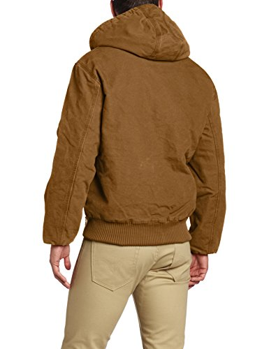 Carhartt vestes à capuchon grès Jacket actifs EJ130, brown, Medium
