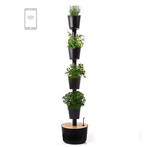 Citysens - Vertikaler Blumentopf mit WiFi-Selbstbewässerung, enthält Kräutersamen, Schwarz, 4 Pflanzgefäße
