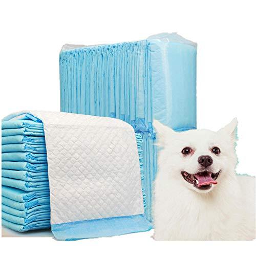 DZL-empapadores Desechables - Empapadores Super-absorbentes, Almohadillas para la incontinencia (XL 60X90CM 30PCS, Blanco)