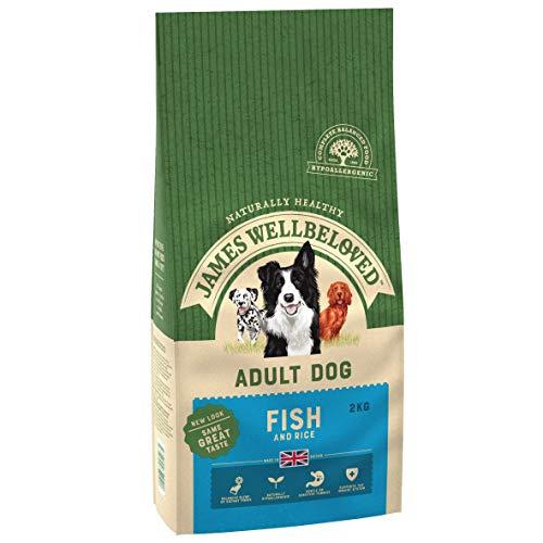 James Wellbeloved Adult Hund - Ente & Reis (2kg)