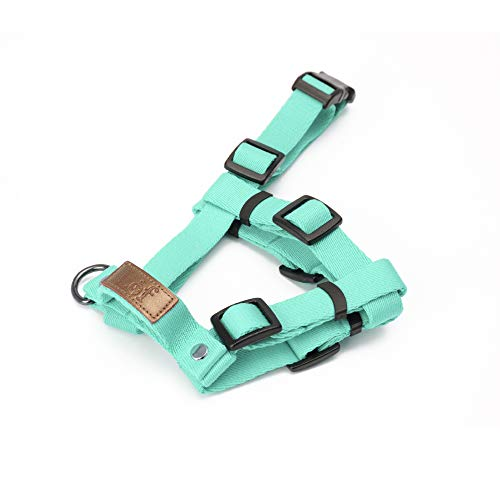 Lof Training Dog Harness with Handle, Designed to fit Dogs Body Best, Durable and Perfect for Small to Large Dogs (Small, Neo Mint)
