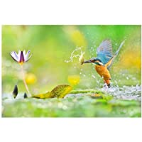 絵画 現代の鳥のポスターとプリント壁アートキャンバス絵画リビングルームの壁の装飾のためのカラフルなカワセミの写真19.7x27.6in(50x70cm)x1pcsフレームなし