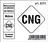 4R Quattroerre.it 6211 Adesivo Sigla Carburante Cng Metano 2018, 6,5 X 7