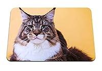 26cmx21cm マウスパッド (猫メインクーン顔脂肪) パターンカスタムの マウスパッド
