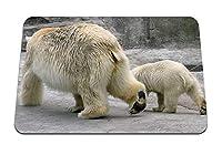 22cmx18cm マウスパッド (シロクマカップル歩く北極の子) パターンカスタムの マウスパッド