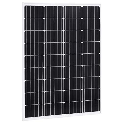 N/O Viel Spaß beim Einkaufen mit Solarmodul 100 W Monokristallin Aluminium und Sicherheitsglas