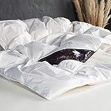 ARCTIC Daunendecke Griffin - Ganzjahres-Kassettenbett mit 90% weißen Entendaunen - DOWNPASS Zertifiziert - Oeko-TEX Standard 100-200 x 200 cm - Weiß