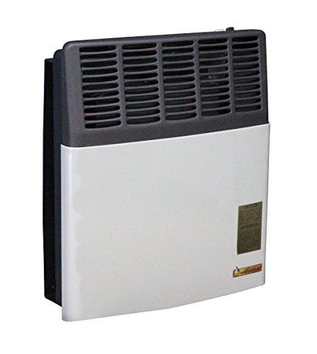 US Stove AGDV12L Ashley Direct Vent 11,000 BTU Propane Gas Heater