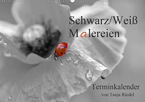 Schwarz-Weiß Malereien Terminkalender von Tanja Riedel für die SchweizCH-Version (Wandkalender 2021 DIN A2 quer)