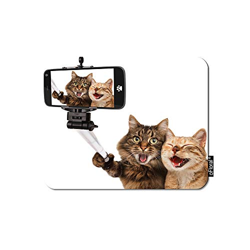 oFloral Cat Gaming Mouse Pad Couple Kitten Taking Selfie with Smart Phone Camera Decorative Mousepad Rubber Base Home Decor for Computers Laptop Office Home 7.9X9.5 Inch