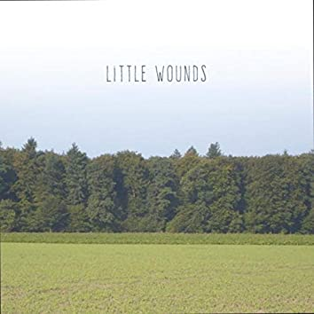 Little Wounds