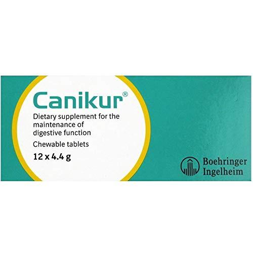 Boehringer Ingelheim Canikur Anti Durchfallerkrankungen Tabletten für Hunde (Menge: Eine Box von 12 x 4,4 g Tabletten), einen Artikel