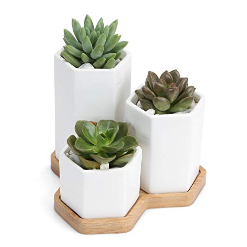 Ceramic Succulent Planter with Square Design Succulent Pots with Bamboo Tray Small Cactus Plant Pot for Home, Garden, Office Decoration (Set of 3)