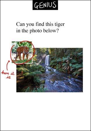 Woodmansterne Grußkarte (WDM-452628) - Can You Find The Tiger - Lustige Karte aus der Genius-Serie von Woodmansterne - geeignet für Geburtstage, Jubiläen und andere Anlässe