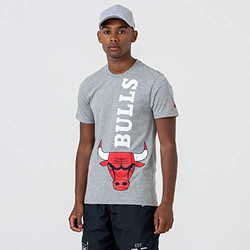 New Era Herren T-Shirts NBA Chicago Bulls Team grau XL