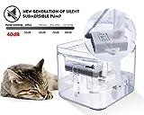Zoom IMG-2 pecute fontana per gatti cani