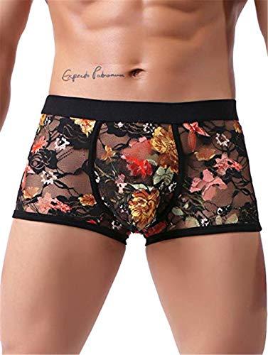 Sexy Men's Boxers Briefs Transparent Lace Underwear (L, Black)