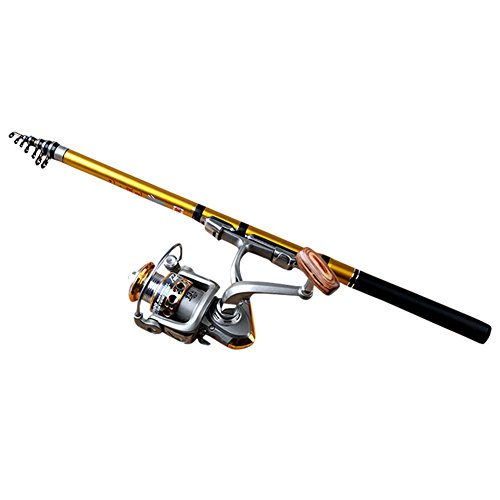Cutogain - Canne à pêche en mer portable en fibre de carbone - Télescopique: 1,8/2.1/2.4/2.7/3.0m - Moulinet pêche à la ligne, doré, 1,8 m
