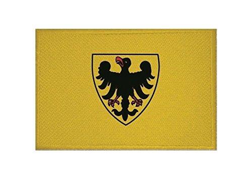 U24 Aufnäher Sinsheim Fahne Flagge Aufbügler Patch 9 x 6 cm