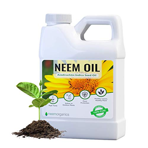 Neem Organics Pure Neem Oil | Neem Oil Spray for Plants | Spray for Indoor & Outdoor Gardens | Organic Neem Oil 100% Cold Pressed, Ultra High Azadirachtin Content | OMRI Listed for Organic Use (16oz)