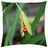ETGeed Semillas de Vaina de Semillas Nature Lily Throw Pillow Fundas, cojín Decorativo para sofá Cama decoración del hogar, 18 x 18 Pulgadas