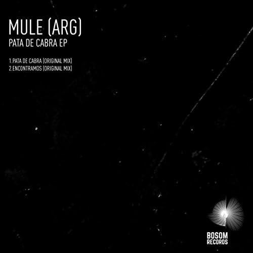 Mule (ARG)