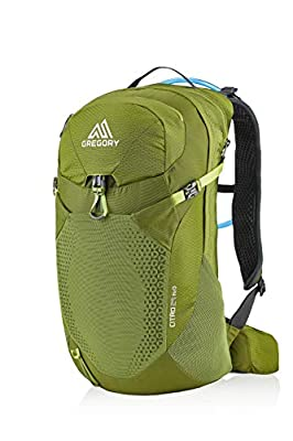 Gregory Mountain Products Men's Citro 24 H2O Hydration Backpack,MANTIS GREEN