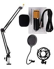 BM-800 Condenser Microphone (set)