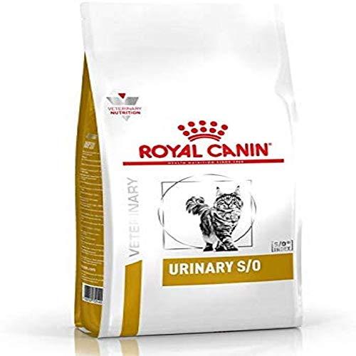 Rascador Para Gato Con Comedero  marca Royal CANIN